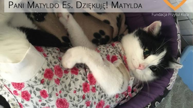 Matylda ma swoją Wirtualną Opiekunkę!