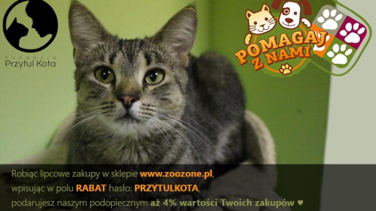 Ostatnie dni, by pomóc naszym podopiecznym w akcji ZooZone.pl