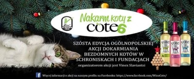 Akcja Nakarm Koty z Cote!