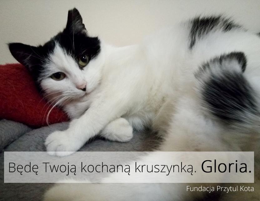 Gloria pojechała do domu!