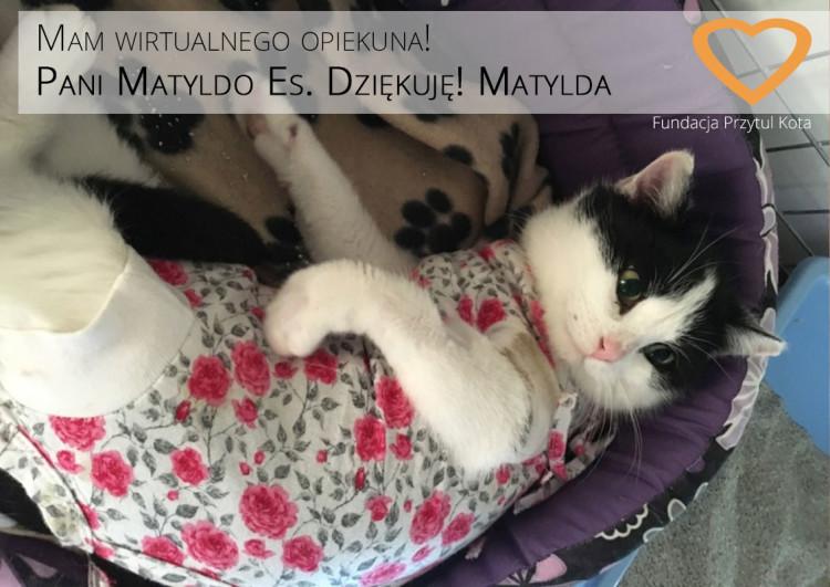 Wirtualny-Matylda