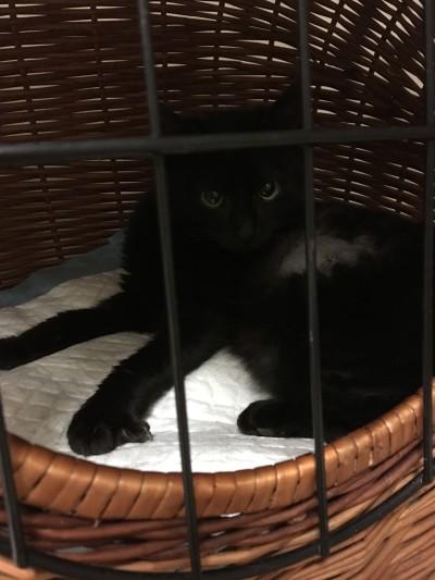 Mimi wróciła na wolność!