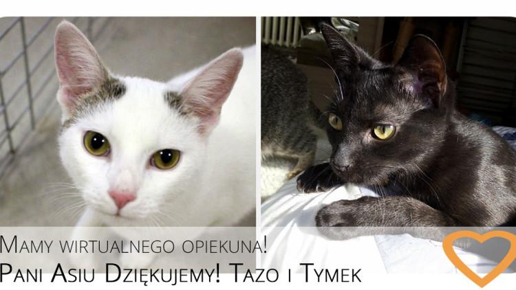 Tazo i Tymek mają Wirtualną Opiekunkę ❤