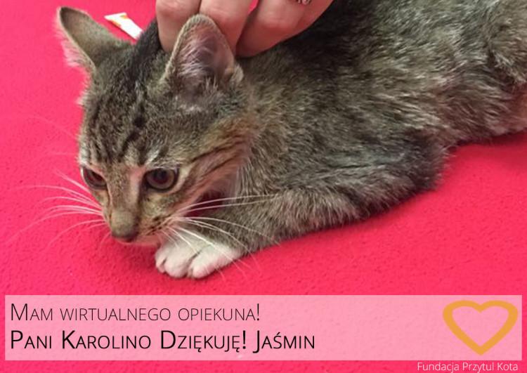 jasmin-karolina