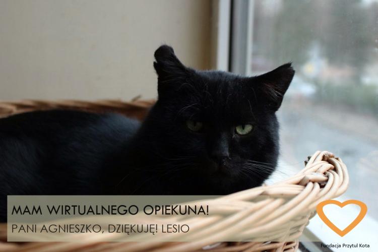 LESIO_WA