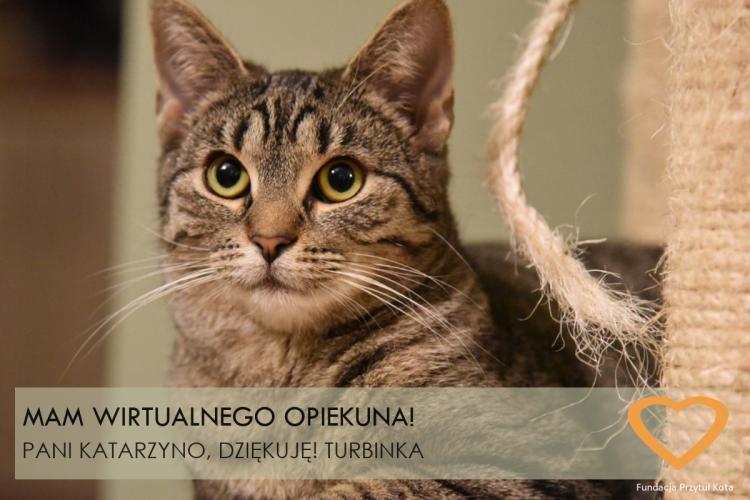 turbinka_WA