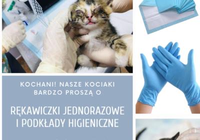 Prośba o rękawiczki i podkłady higieniczne